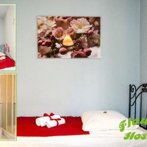 Ostelli e Alberghi - Ostello  Flower