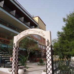 Ostelli e Alberghi - Airport Hotel Les Amis