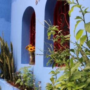 Ostelli e Alberghi - Ostello Red Blue