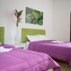 Ostelli e Alberghi - Cocoon Hotel